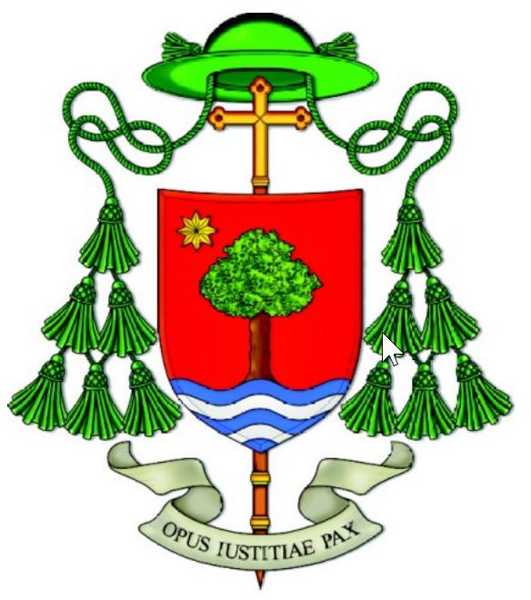 Disposizioni del Vescovo Camisasca fino al 14 marzo 2020